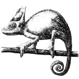 Chameleon - ink 25 x 25cm